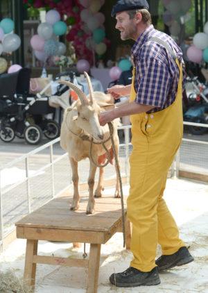 chèvre animaux ferme enfants animation anniversaire fermier