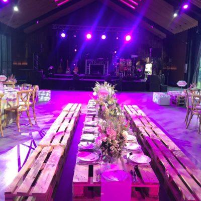 Bar mitzvah violet salle spectacle salle des fêtes tables décoration adultes spots groupe de musique